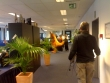 Walibi visits the office