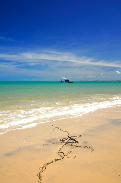 Drift wood branch with fishing boat (Corumbau, Bahia, Brazil)